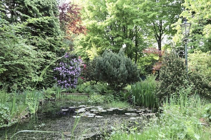 Garten Naturteich